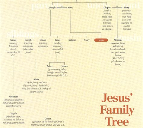 genealogy of joseph fisher and his descendants and of the allied families of farley farlee fetterman pitner reeder and shipman classic reprint books 家系図 喜ぶ人と共に喜び 泣く人と共に泣きなさい 新約聖書 ローマの信徒への手紙12章15節