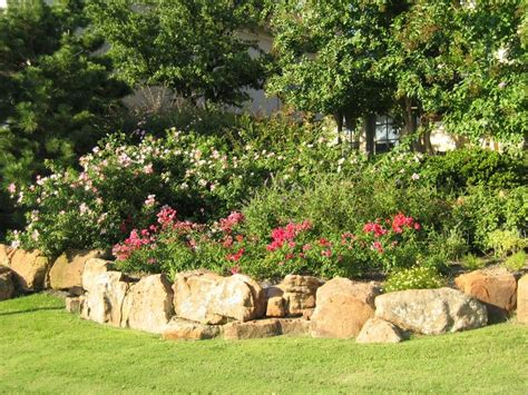backyard ideas texas landscaping ideas for backyard in texas mystical designs