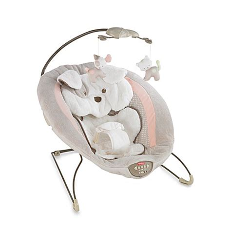 fisher price puppy bouncer fisher price 174 my snugapuppy deluxe bouncer buybuy baby