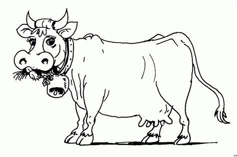 kuh frisst ausmalbild malvorlage tiere innen kuh