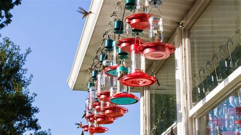 how do you keep bees away from a hummingbird feeder