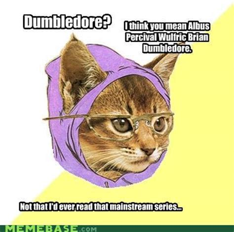 Hipster Kitty Meme - the book buff betcha didn t know harry potter edition
