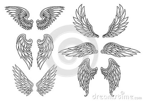 heraldic wings set stock photography image 33733912