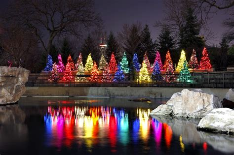 5800 n clark christmas trees chicago the big city seven ways to experience the season in chicago this december domain
