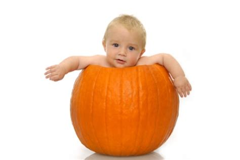 pumpkin baby 10 awesomely adorable babies in pumpkins yummly