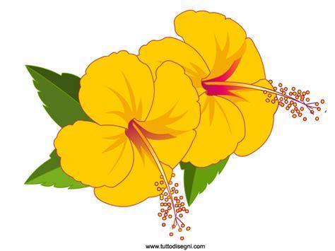 fiori hawaiani disegni due fiori gialli di hibiscus tuttodisegni