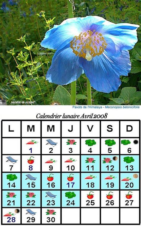 Calendrier Lunaire Novembre 2008 Jardiner Avec La Lune En Avril 2008 Le Jardinoscope Cot 233