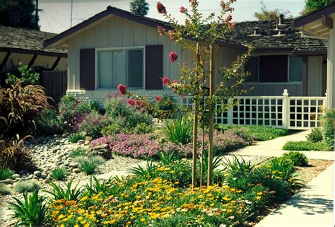 landscaping front yard landscaping ideas low water
