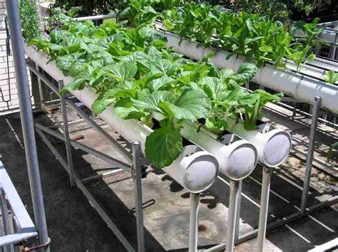 hydroponics system الزراعة المائية
