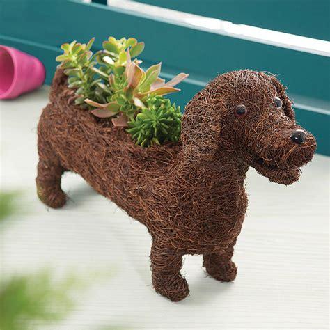 dachshund planter dachshund planter by marquis dawe notonthehighstreet