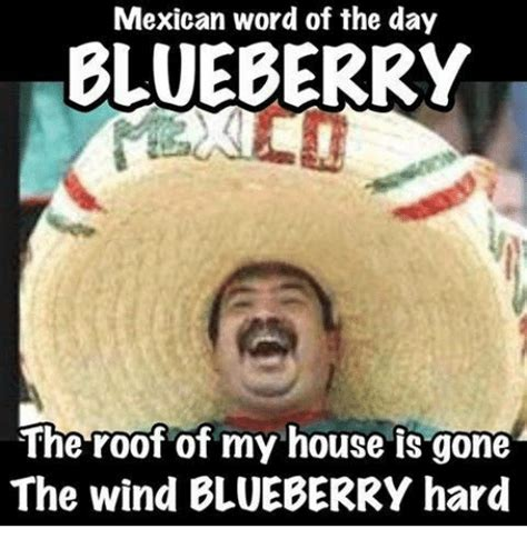 Funny Memes Of The Day - mexican word of the day blueberry the roof of my house is