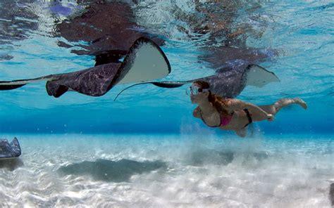 banche isole cayman isole cayman non per milionari passenger 6a