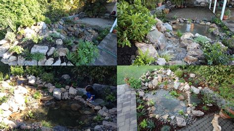 installing a backyard pond pond installation project in los angeles sierra pacific design