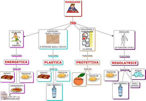 alimenti contenenti aminoacidi educazione alimentare prof loseto