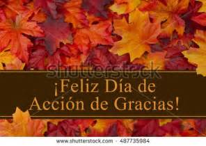 how to say happy thanksgiving in spanish happy thanksgiving greeting in spanish some fall leaves