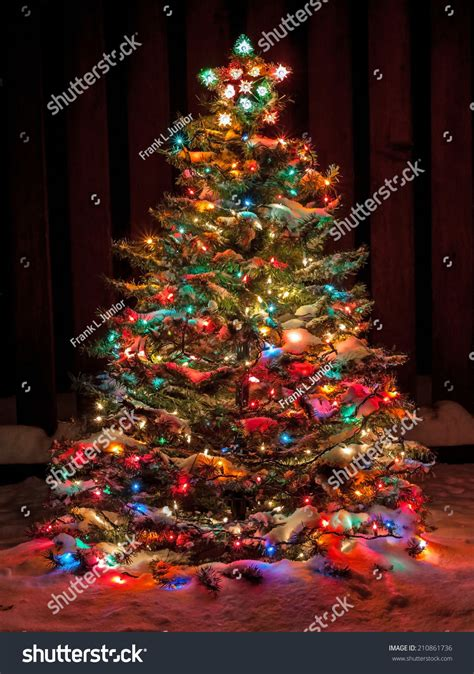 snowball lights for christmas tree snow covered tree multi colored stock photo 210861736