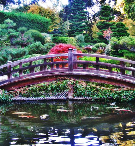 Hakone Gardens by 1000 Images About Hakone Gardens On Hakone