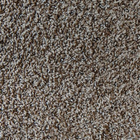 encore color mystical twist 12 ft carpet h2006 604 1200