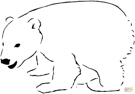 ice bear coloring page polar bear 12 coloring page free printable coloring pages