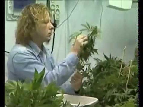 fabrication d une chambre de culture culture indoor cannabis fabrication d une chambre de