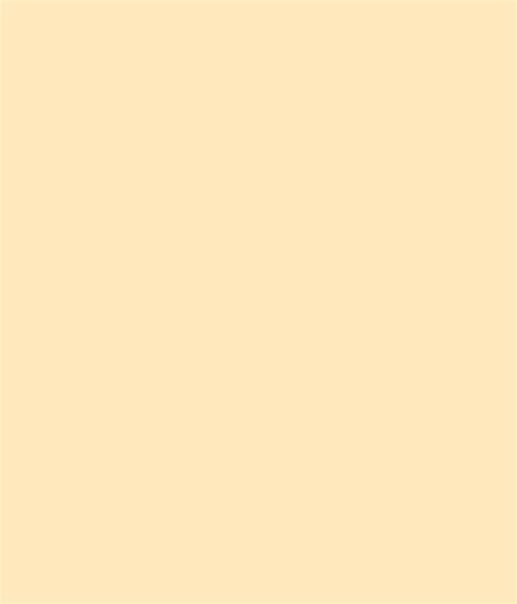 buy asian paints ace exterior emulsion sisal mat at low price in india snapdeal