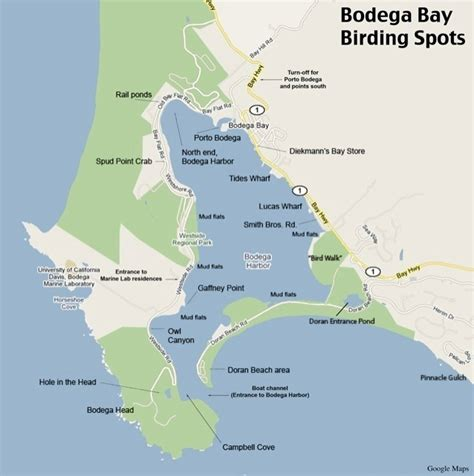 california map bodega bay bodega bay map