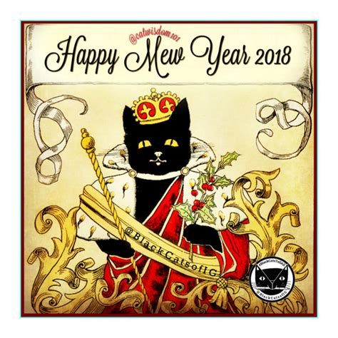 cat years vs years black cat new years 28 images 100 years of new year s cheer with cats cat wisdom