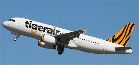 Budget Airline Tiger Airways To Fly To Perth Australia by Tigerair Review Airline Ratings