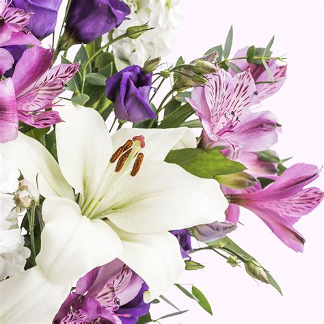 Wedding Congratulations Flowers Uk by Congratulations Letterbox Flowers By Bloom