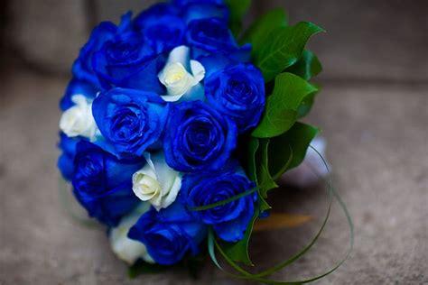 Bunga Buket Mawar Biru Bouquet Bunga Mawar Biru uniknya bunga mawar biru safa flower and bouquet