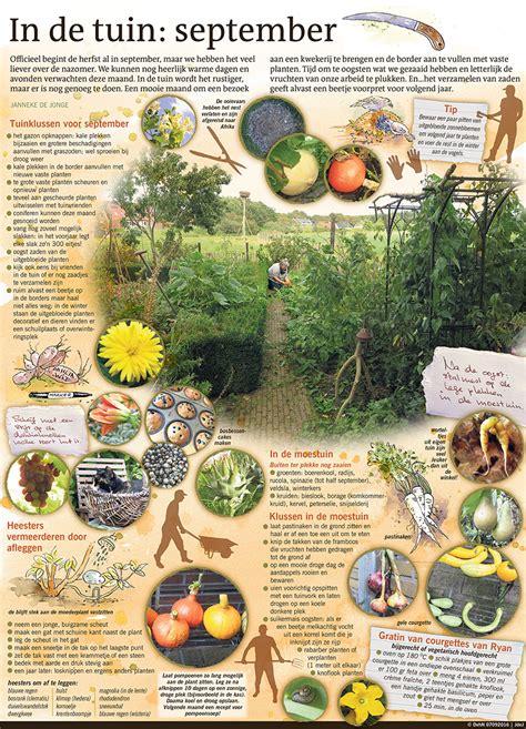 tuin september in de tuin september in beeld co