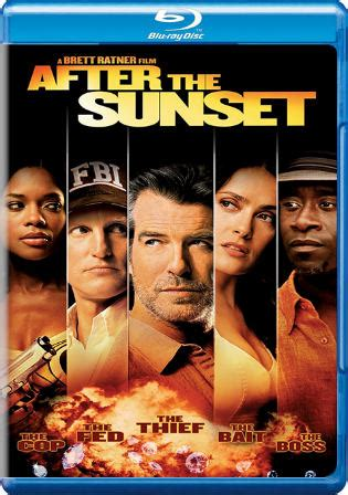 after the sunset 2004 in hindi full watch after the sunset 2004 bluray 750mb hindi dual audio 720p movies wood