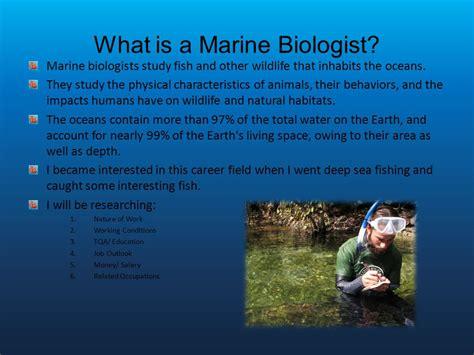 marine biologist description marine biologist salary becoming a marine biologist