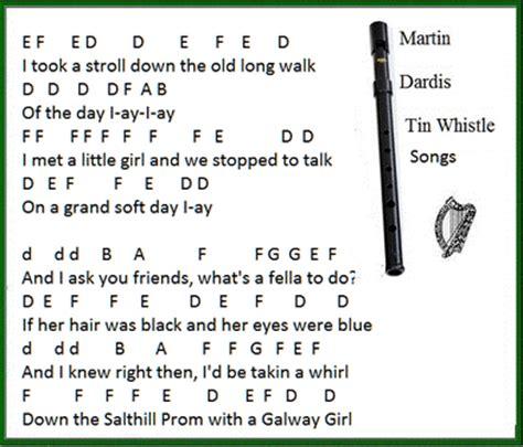 testo popular song galway song lyrics guitar chords and tin whistle