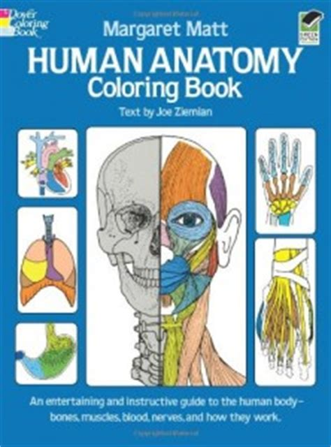 anatomy coloring book look inside the best anatomy books learning aids for
