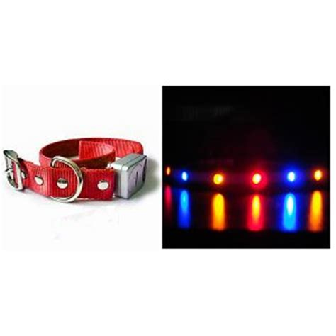 Blinky Lights by Pet Collars Quot Blue Orange Quot Led