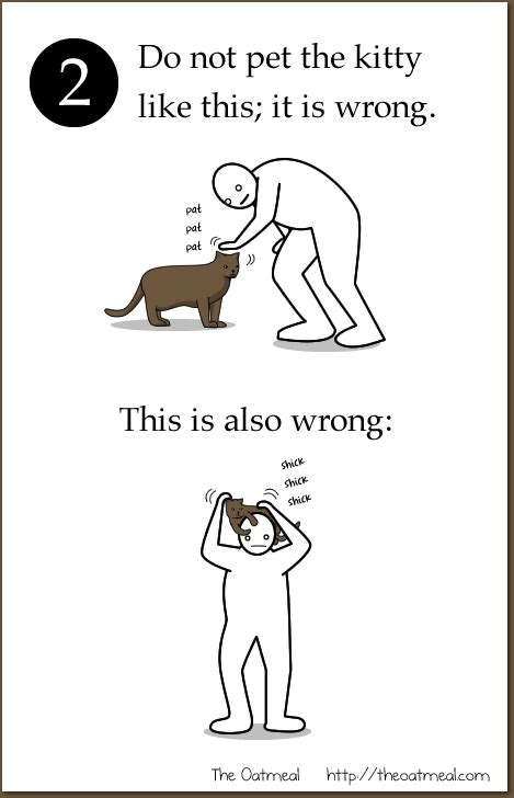how to a pet how to pet a the oatmeal