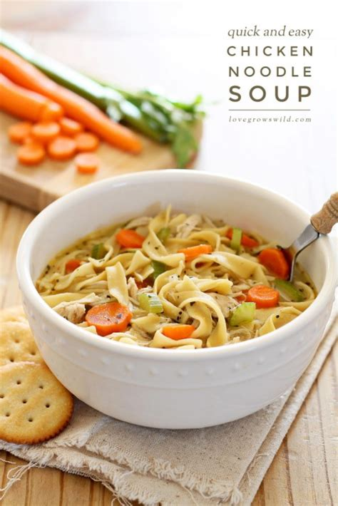 quick and easy chicken noodle soup love grows wild