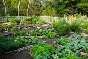 Backyard Vegetable Garden Layout Backyard Vegetable Garden Design Ideas Home Design Ideas