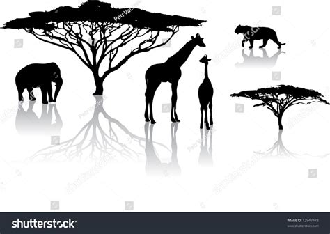 Safira Whity silhouettes of animals from safari zoo stock vector