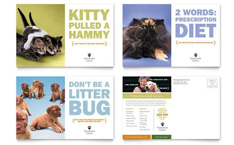 creative marketing for animal pet care services stocklayouts