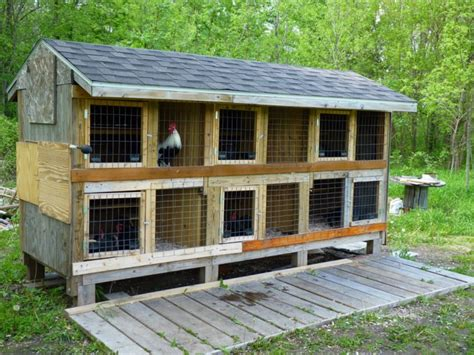 Small Kitchen Cabinet Ideas by 14 Awesome Chicken Coop Designs For The Stylish Backyard Bird