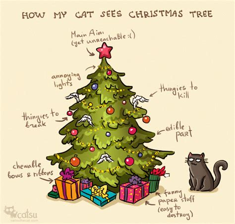 daily cat and christmas tree a very atheist christmas