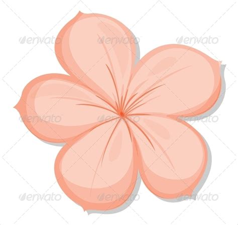 flower petal template 20 free word pdf documents