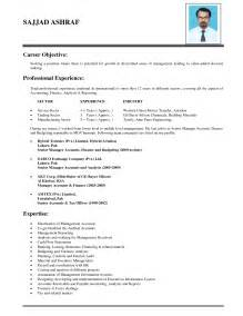 Resume Employment Objectives Objective Lines For Resumes Career Objective With Professional Experience