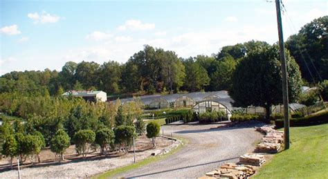 retail clarksville nursery woffords nursery of