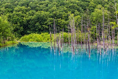 Blue Japan Der Blue Pond In Biei Japan Urlaubsguru De