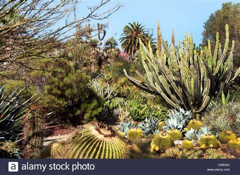 huntington library collections botanical gardens the huntington library collections botanical gardens