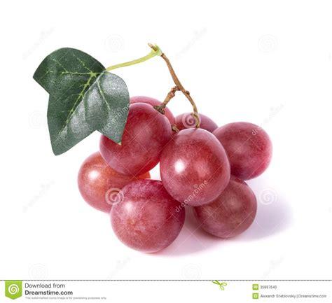 imagenes uvas rojas uvas rojas foto de archivo imagen de fresco comida