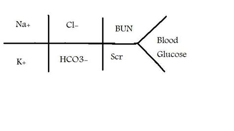 cbc fishbone diagram image gallery electrolyte fishbone